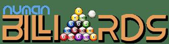 Numan Billiards Logo